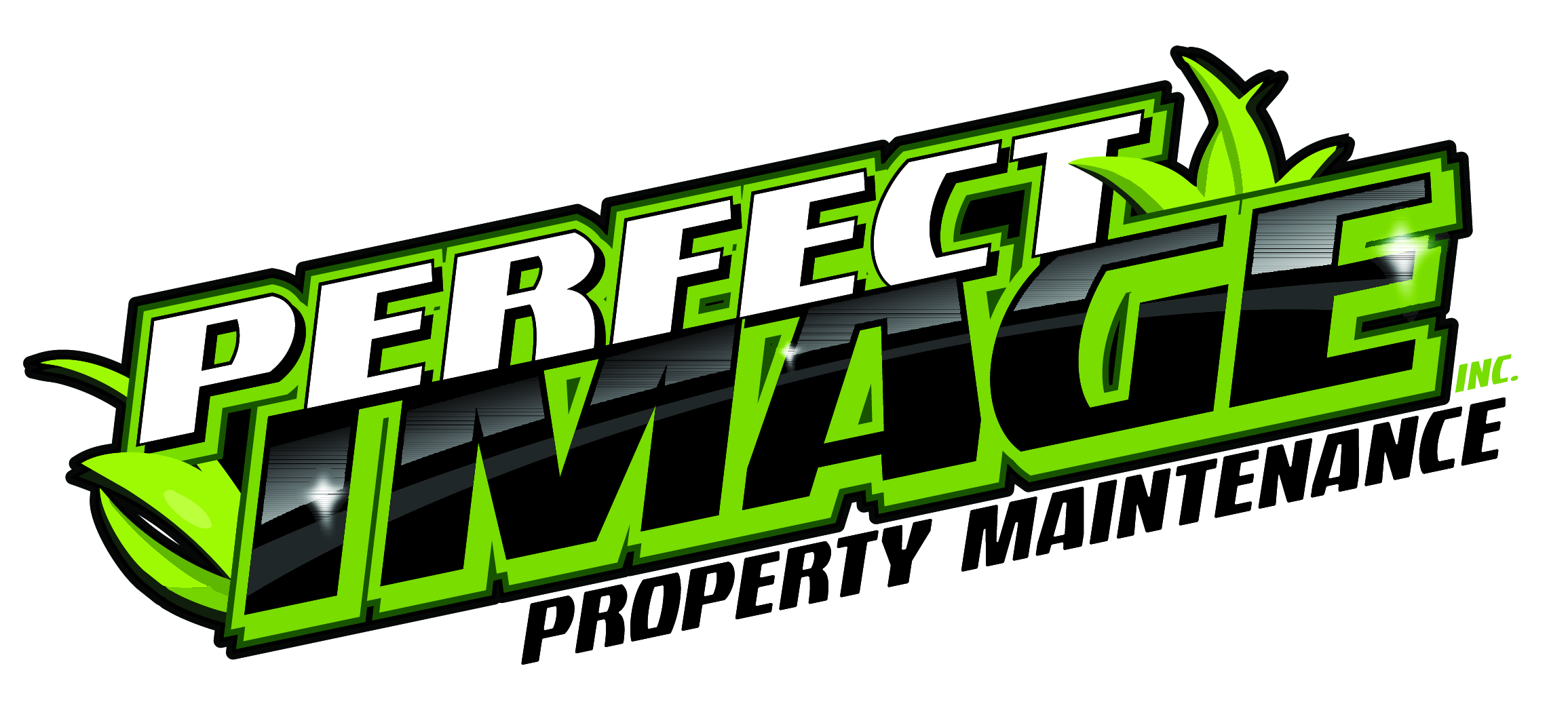 Perfect Image Logo